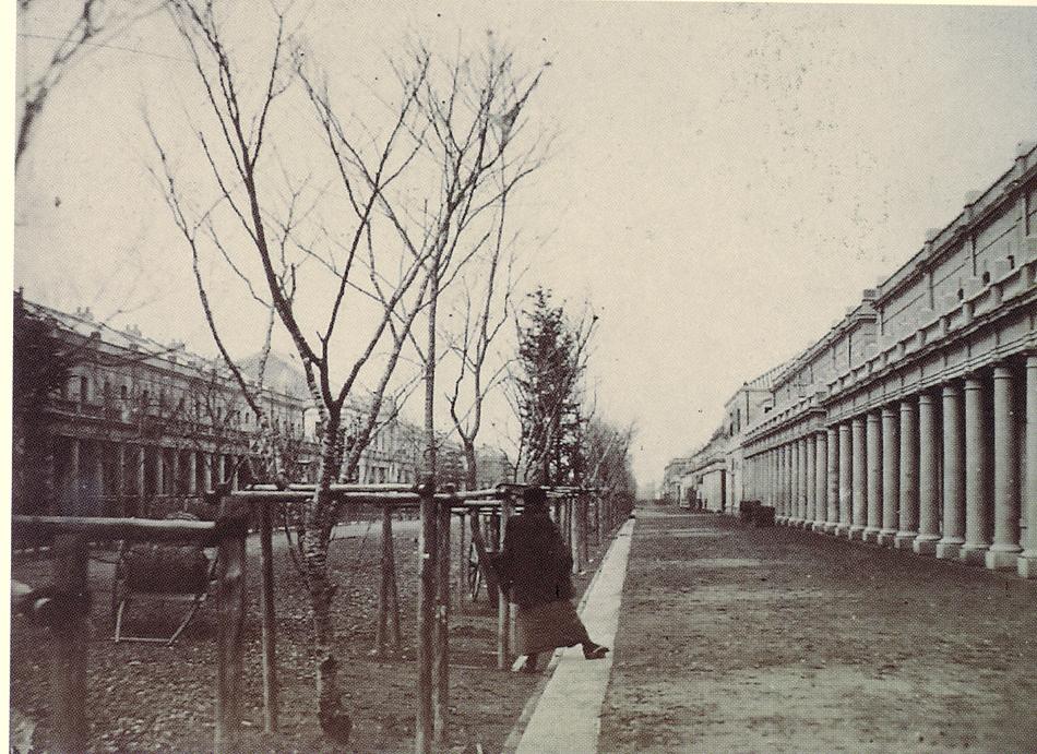 1873年(明治6年)銀座通り: alpshima
