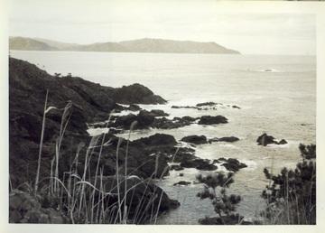 195512jpg