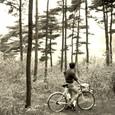 1965・所沢周辺