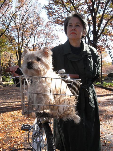 2008 駒沢公園の秋